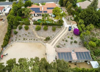 Camarillo Single Family Home For Sale: 12174 Alison Drive