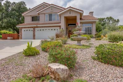 Chatsworth Single Family Home For Sale: 9627 Andora Avenue