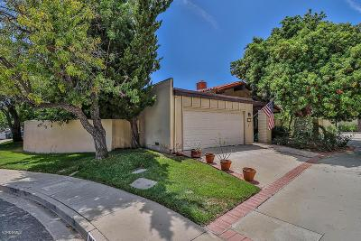 Westlake Village Single Family Home For Sale: 1039 Elfstone Court