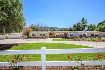 Thousand Oaks Single Family Home For Sale: 481 Calle Yucca