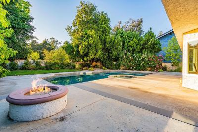 Thousand Oaks Single Family Home For Sale: 311 Fox Hills Drive