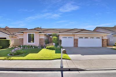 Newbury Park Single Family Home For Sale: 141 Giant Oak Avenue