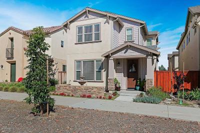 Ventura Single Family Home For Sale: 10680 North Bank Drive