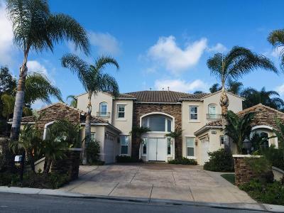 Camarillo Single Family Home For Sale: 5325 Calarosa Ranch Road