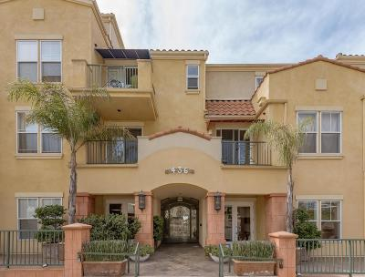 Ventura Condo/Townhouse For Sale: 436 Poli Street #403