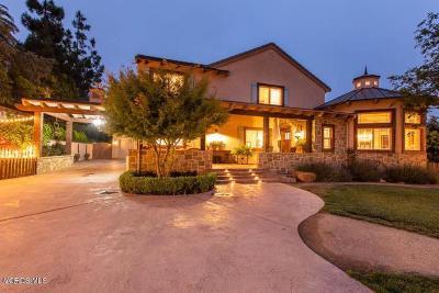 Camarillo Single Family Home For Sale: 421 La Marina Drive