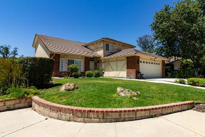 Agoura Hills Single Family Home For Sale: 5503 Evita Court