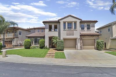 Simi Valley Single Family Home For Sale: 5925 Indian Terrace Drive