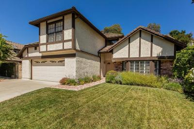 Calabasas Single Family Home For Sale: 22233 Craft Court