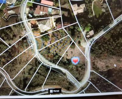 Agoura Hills Residential Lots & Land For Sale: Canyon