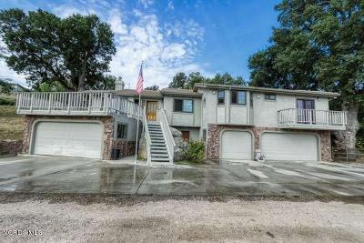 Tehachapi Single Family Home For Sale: 30300 Sunland Way