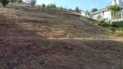 Chatsworth Residential Lots & Land For Sale: 22458 North Summit Ridge Circle