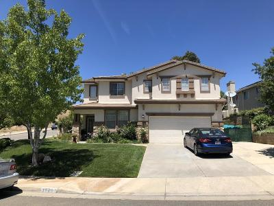 Castaic Single Family Home For Sale: 32203 Vista Point Place