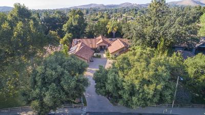 Westlake Village Single Family Home For Sale: 31709 Foxfield Drive