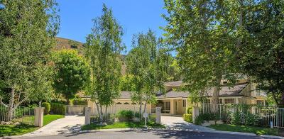 Westlake Village Single Family Home For Sale: 4098 Skelton Canyon Circle