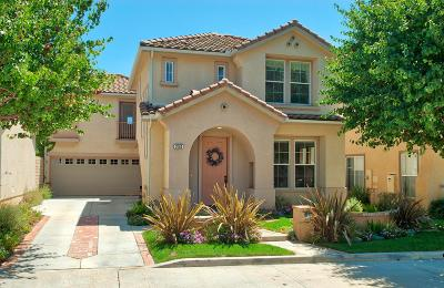 Simi Valley Single Family Home For Sale: 250 Whispering Gates Court