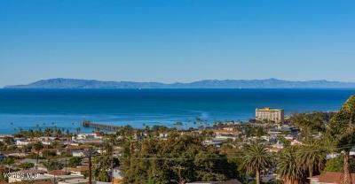 Ventura Single Family Home For Sale: 1456 Brodiea Avenue