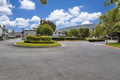 Ventura County Condo/Townhouse For Sale: 6542 Twin Circle Lane #4