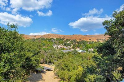 Agoura Hills Single Family Home For Sale: 6030 Colodny Drive