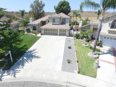 Moorpark Single Family Home For Sale: 7091 Hastings Street