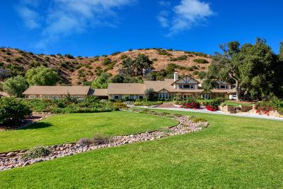 Thousand Oaks Single Family Home For Sale: 1515 Hidden Valley Road