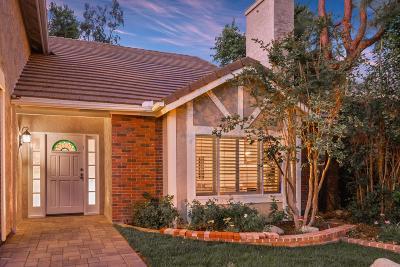 Agoura Hills Single Family Home For Sale: 29393 Fountainwood Street
