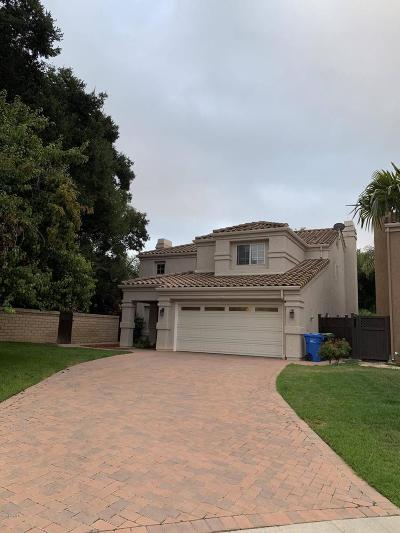Calabasas Single Family Home For Sale: 26604 Sunflower Court