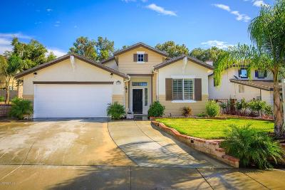 Castaic Single Family Home Active Under Contract: 28325 Arroyo Court