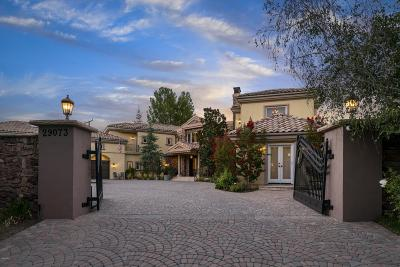 Agoura Hills Single Family Home For Sale: 29073 Silver Creek Road