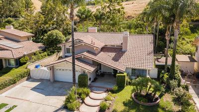 Simi Valley Single Family Home For Sale: 2842 Chippewa Avenue