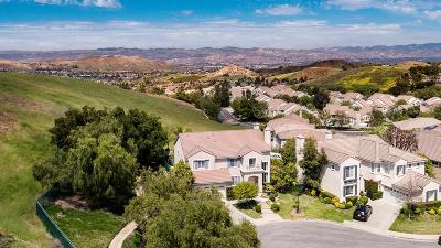 Simi Valley Single Family Home For Sale: 685 Starbright Court