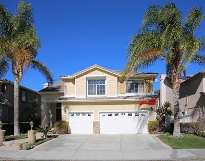 Stevenson Ranch Single Family Home For Sale: 25669 Moore Lane