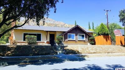 Single Family Home For Sale: 258 Greenbank Avenue