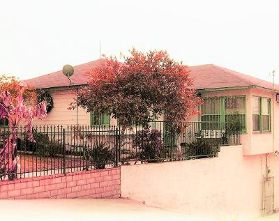 Los Angeles CA Single Family Home For Sale: $449,000