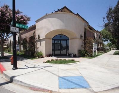 Burbank Condo/Townhouse For Sale: 201 North Reese Place #201