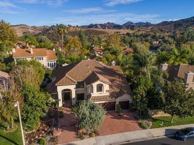 Burbank Single Family Home For Sale: 1040 North Buena Vista Street