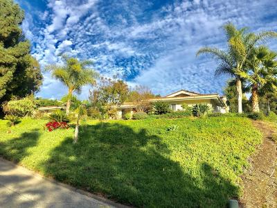 Glendale Single Family Home For Sale: 437 Canyon Drive