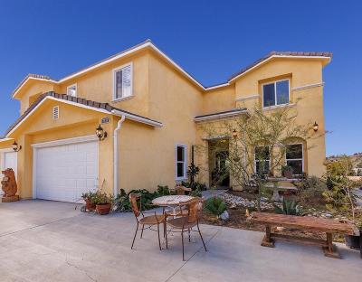 Canyon Country Single Family Home For Sale: 18706 Goodvale Road