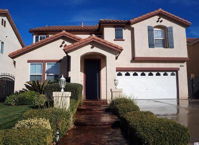 Castaic Single Family Home For Sale: 29620 Castlebury Place