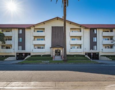 Glendale Condo/Townhouse For Sale: 1422 Rock Glen Avenue #110