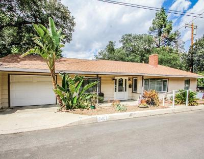 Sunland Single Family Home For Sale: 8407 Cora Street