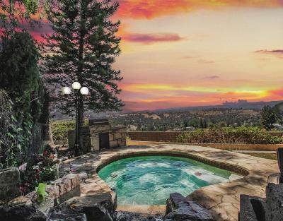 Woodland Hills Single Family Home For Sale: 4535 San Blas Avenue