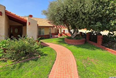 Sylmar Single Family Home For Sale: 13797 De Garmo Avenue