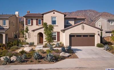 Sunland Single Family Home For Sale: 8333 West Big Canyon Drive