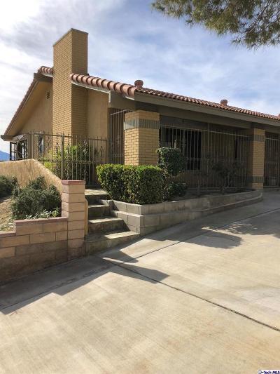 Desert Hot Springs Single Family Home For Sale: 9301 Valencia Drive