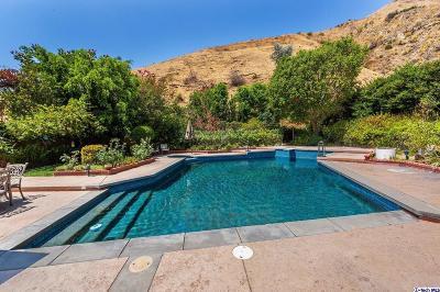Burbank Single Family Home For Sale: 3429 Brace Canyon Road