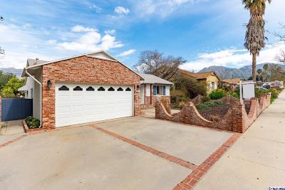 Sunland Single Family Home For Sale: 8241 Owens Street