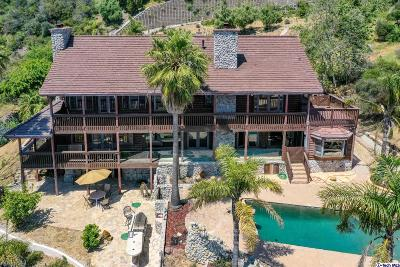Malibu Single Family Home For Sale: 333 Moonrise Drive