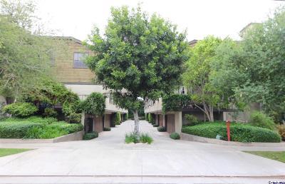 Pasadena Condo/Townhouse For Sale: 64 North Oak Avenue #11