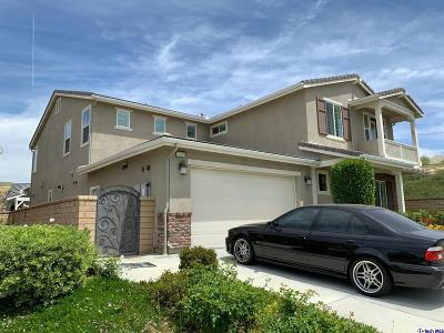 Saugus Single Family Home For Sale: 26459 Riverrock Way